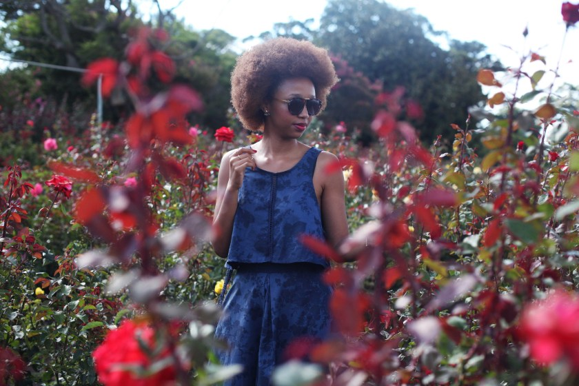 01_roses_are_red_chart_farm_wynberg_capetown_rose_picking_tokelo_motsepe_through_shaded_eyes
