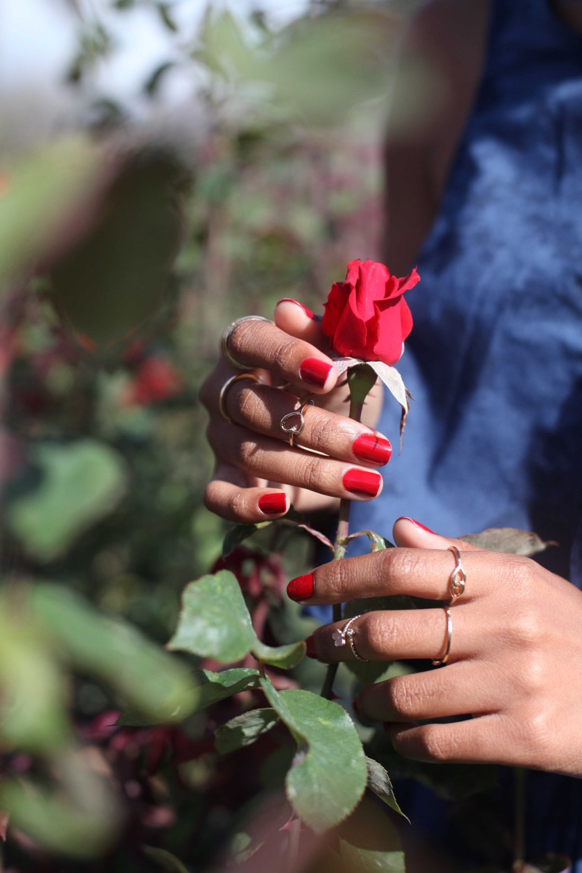 04_roses_are_red_bluemonday_outfit_chart_farm_wynberg_capetown_rose_picking_tokelo_motsepe_through_shaded_eyes
